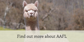 Find out more about AAFL